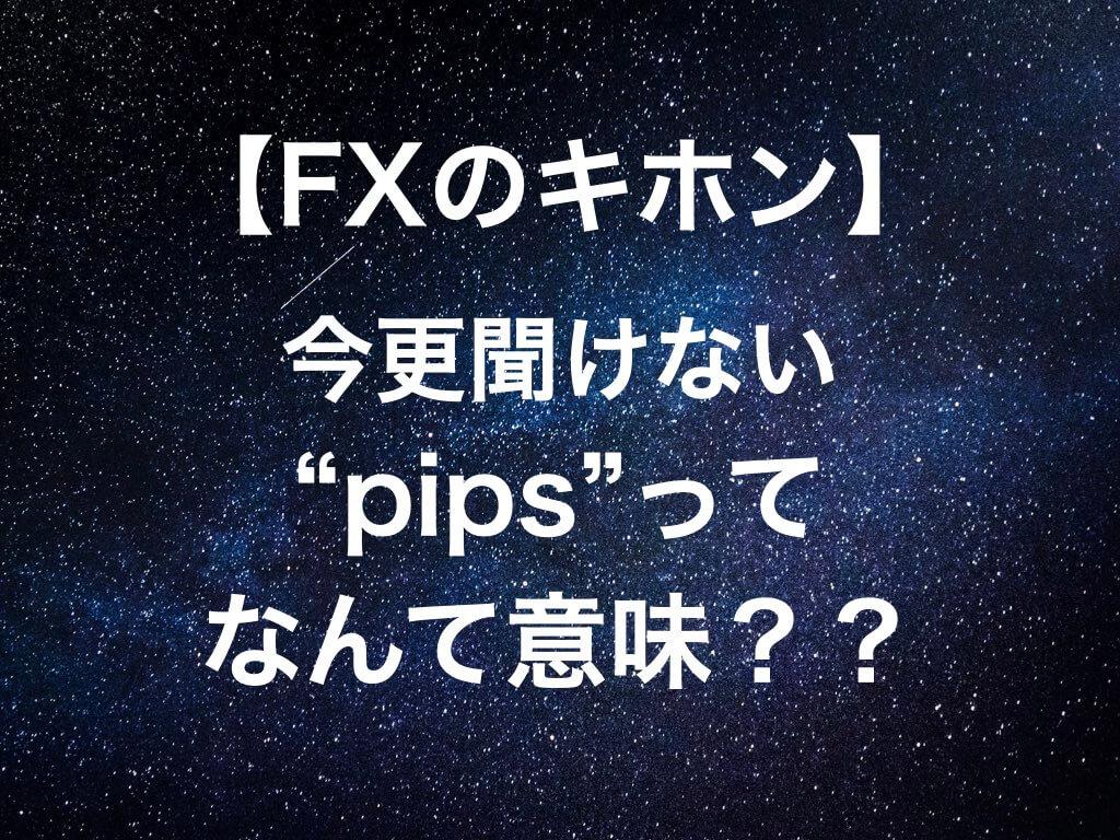 """【必見】今更聞けないFX""""pips""""って何て意味!?"""